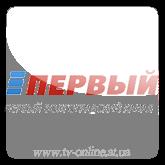 Смотреть онлайн канал Первый Волгоградский бесплатно в хорошем качестве