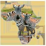Смотреть онлайн канал Вся Африка бесплатно в хорошем качестве